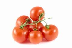 Bio tomaat Royalty-vrije Stock Fotografie