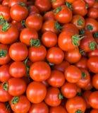 Bio tomates Imagem de Stock Royalty Free