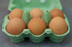 Bio- uova Illustrazione Vettoriale