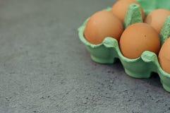 Bio- uova Illustrazione di Stock