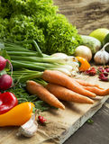 Bio Vegetables Freshly Picked, Healthy Vegetables Assortment Royalty Free Stock Photos