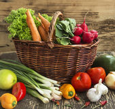 Bio Vegetables Freshly Picked, Healthy Vegetables Assortment Stock Photography