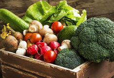 Bio vegetables in wooden crate with radish,salad,mushrooms,brocc Royalty Free Stock Photography