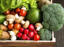 Bio vegetables in wooden crate with radish,salad,mushrooms,brocc Stock Photos