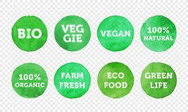 Bio, veggie, farm fresh, vegan, 100 organic and local food product label icon set. Vector green eco symbol for vegetarian banner, sticker tag or logo design royalty free illustration