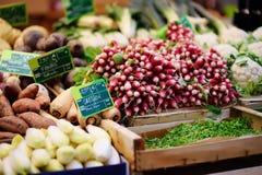Bio- verdure ed erbe fresche sul mercato dell'agricoltore a Strasburgo, Francia Fotografia Stock Libera da Diritti