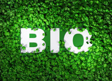 BIO word among the grass Stock Photo