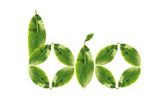 Bio. Word made up of green leaves Royalty Free Stock Photos