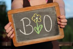 BIO written with flower. With chalk on slate shown by young female Stock Image