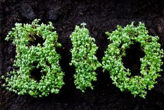 BIO written with herbage. The word BIO written with fresh grown cress Stock Images