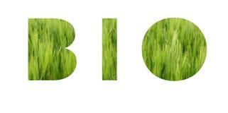 Biobeschriftung Eco Konzept Hintergrund des klaren grünen Grases der Wiese lizenzfreies stockbild