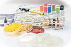 Biochem test kit for identified pathogen. Biochem test kit for identified pathogen in microbiology room Royalty Free Stock Image