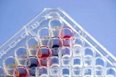 Biochemical assay Stock Photo
