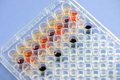 Biochemical assay Royalty Free Stock Images