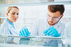 Biochemical experiment Stock Photos