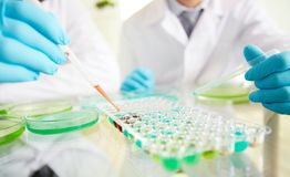 Biochemical research Stock Image