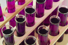 Biochemical test tubes in lines at a laboratory. Lines of test tubes arranged in rows with a purple solution inside in a laboratory for medical research Royalty Free Stock Photo