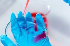 Biochemiczna analiza i Chemiczna analiza w Lab zdjęcie stock