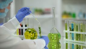 Biochemist dripping oily plant extract from flask to test tube natural resources. Stock footage stock footage