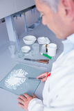 Biochemist standing while preparing some medicine. In laboratory stock image