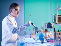Biochemist studying a plant Royalty Free Stock Images