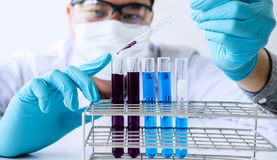 Biochemistry laboratory research, Scientist or medical in lab coat holding test tube with reagent with drop of color liquid over. Glass equipment working at the royalty free stock images