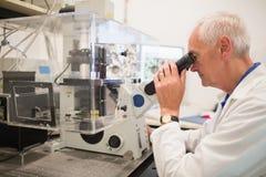 Biochimico che per mezzo di grandi microscopio e computer Fotografia Stock