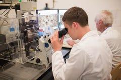 Biochimico e studente che esaminano le immagini microscopiche sul computer Fotografie Stock
