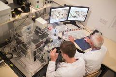 Biochimico e studente che esaminano le immagini microscopiche sul computer Fotografia Stock Libera da Diritti