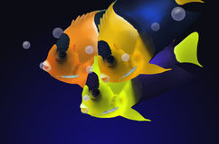 Biocolor angle fish masses. In deep blue sea Stock Images