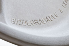 Biodegradable paper plate detail Stock Photo