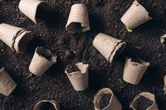 Biodegradable peat pot on greenhouse compost humus soil royalty free stock image