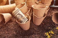 Biodegradable peat pot soil containers and US dollar banknotes stock photography