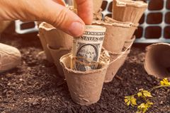 Biodegradable peat pot soil containers and US dollar banknotes royalty free stock photos