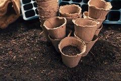 Biodegradable peat pots for organic farming food production. On fertile soil ground stock photo