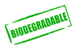 Biodegradable rectantular rubber stamp Royalty Free Stock Photos