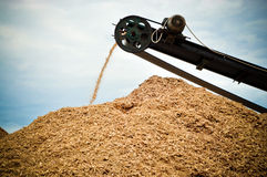 Biodegradable wood waste. Image of a conveyor belt transporting wood waste Royalty Free Stock Photography