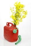 Biodiesel Royalty Free Stock Image