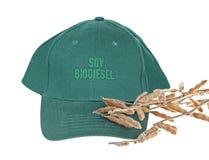 Biodiesel de la soja Fotografía de archivo