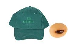 Biodiesel de la soja Imagen de archivo
