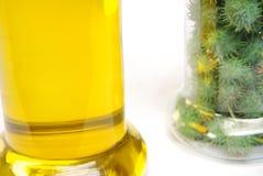 Biodiesel e ricini Fotografia Stock