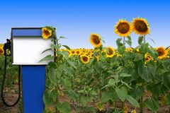 biodieselstrid Arkivbilder