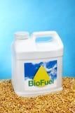 biodiesla galon zdjęcie stock