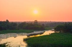 Biodiversiteit Nagpur Stock Fotografie