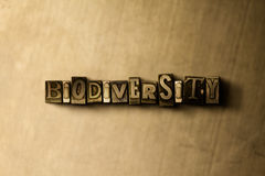 BIODIVERSITY - close-up of grungy vintage typeset word on metal backdrop. Royalty free stock illustration.  Can be used for online banner ads and direct mail Royalty Free Stock Photos