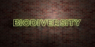 BIODIVERSITY - fluorescent Neon tube Sign on brickwork - Front view - 3D rendered royalty free stock picture. Can be used for online banner ads and direct Royalty Free Stock Photography