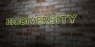 BIODIVERSITY - Glowing Neon Sign on stonework wall - 3D rendered royalty free stock illustration. Can be used for online banner ads and direct mailers Stock Images