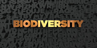 Biodiversity - Gold text on black background - 3D rendered royalty free stock picture. This image can be used for an online website banner ad or a print Royalty Free Stock Images