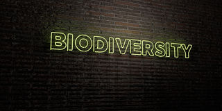 BIODIVERSITY -Realistic Neon Sign on Brick Wall background - 3D rendered royalty free stock image. Can be used for online banner ads and direct mailers Stock Photo