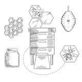 Biodling anmärker med bin och bikupor Arkivfoto